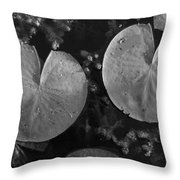 Lilly Pad Symmetry  Throw Pillow