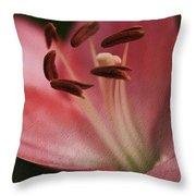 Lilly Pink Craquelure Throw Pillow