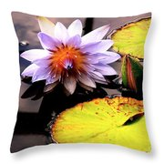 Lillypad In Bloom Throw Pillow