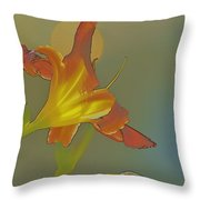 Lily Abstract Medium Background Medium Toned Flower Throw Pillow