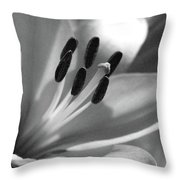 Lily - American Cheerleader 03 - Bw - Water Paper Throw Pillow