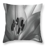 Lily - American Cheerleader 07 - Bw - Water Paper Throw Pillow