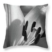 Lily - American Cheerleader 14 - Bw - Water Paper Throw Pillow