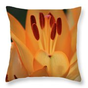 Lily - American Cheerleader 15 Throw Pillow