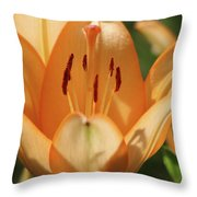 Lily - American Cheerleader 19 Throw Pillow