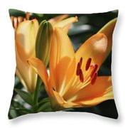 Lily - American Cheerleader 22 Throw Pillow