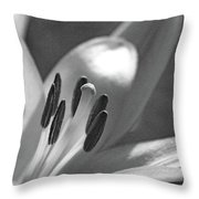 Lily - American Cheerleader 24 - Bw - Water Paper Throw Pillow