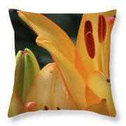 Lily - American Cheerleader 32 Throw Pillow