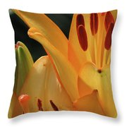 Lily - American Cheerleader 33 Throw Pillow
