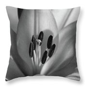 Lily - American Cheerleader 37 - Bw - Water Paper Throw Pillow