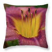 Lily Bloom Close Up Throw Pillow
