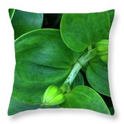 Lily Buds Throw Pillow