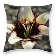 Lily Burn II  Throw Pillow