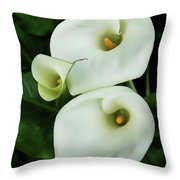 Lily Family Throw Pillow