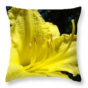 Lily Flower Artwork Yellow Lilies 1 Giclee Art Prints Baslee Troutman Throw Pillow