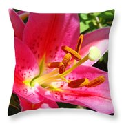 Lily Flower Pink Lilies Giclee Art Prints Baslee Troutman Throw Pillow