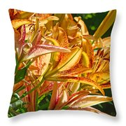 Lily Flowers Floral Garden Prints Baslee Troutman Throw Pillow