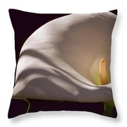 Lily In Shadows Throw Pillow