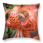 Lily In The Rain Throw Pillow
