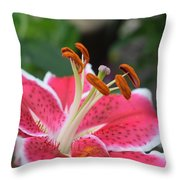 Lily Throw Pillow