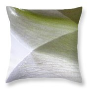 Lily Light And Shadow Throw Pillow