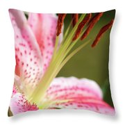Lily One Throw Pillow