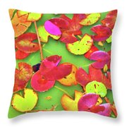 Lily Pad Faces Throw Pillow