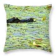 Lily Pad Gator Throw Pillow