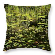 Lily Pad Place Throw Pillow