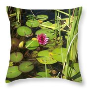 Lily Pad Pond In High Noon Sun Throw Pillow