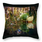 Lily Pad Reflection Oil Throw Pillow