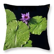 Lily Pads From Above Throw Pillow