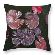 Lily Pads In The Pond Throw Pillow