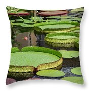 The Lily Pond Throw Pillow
