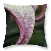 Lily Petal Throw Pillow