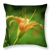 Lily Picture - Daylily Throw Pillow