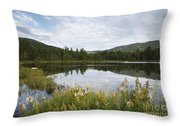 Lily Pond - White Mountains New Hampshire Usa Throw Pillow