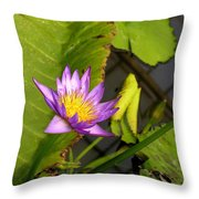 Lily Pond Throw Pillow