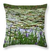 Lily Pond Panorama Throw Pillow