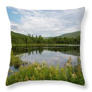 Lily Pond - White Mountains, New Hampshire Throw Pillow