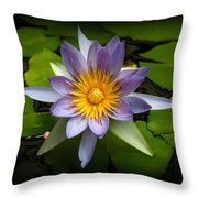Lily Queen Of The Pond  Throw Pillow