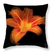Lily Raindrops In Giverny, France Throw Pillow