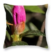 Lily Ready To Bloom Throw Pillow