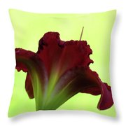 Lily Red On Yellow Green - Daylily Throw Pillow