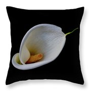 Lily Smile Throw Pillow