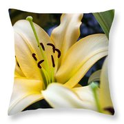 Lily Splendor Throw Pillow