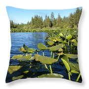 Lilypads On Amber Lake Throw Pillow