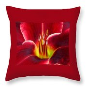 Lily's Way Throw Pillow