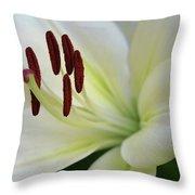 Lilywhite Throw Pillow