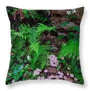 Limberlost Throw Pillow